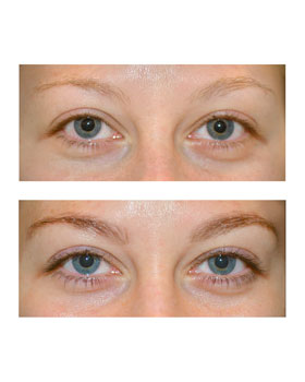 Brow and Lash Tinting